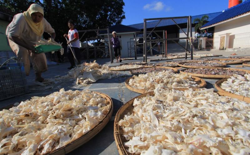 Pengolahan Tulang Ikan untuk Bahan Baku Kosmetik